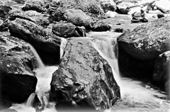 31/116 Wet: Rock in the Brook at Anna Ruby Falls (Bella Lisa) Tags: wet rock boulder winery helen rack annarubyfalls northgeorgiamountains unicoi helengeorgia mountyonah 116picturesin2016 mountyonahwinery