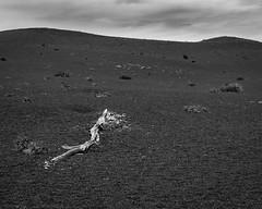 Desolation Trail Hawaii (t conway) Tags: