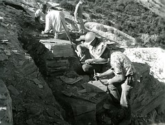Studying rock strata (PUC Special Collections) Tags: california coastal mendocino 1960s norcal 1970s biology tidepools puc albion estuaries mendocinocounty pacificunioncollege albionfieldstation albionbiologicalfieldstation pucbiologydepartment