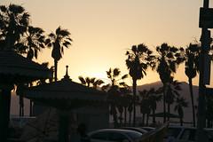 @IMG_4620 (bruce hull) Tags: sanfrancisco california aquarium coast highway chinatown pacific wharf whales coit emabacadero