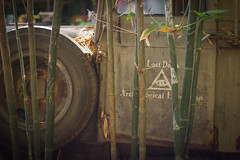 IMG_0737 (R. Zavala) Tags: disney disneyland disneylandresort disneycaliforniaadventure adventureland indianajones indianajonesadventure temple