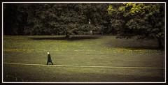 HomeRun . . . (smithjuha440) Tags: wald art person baum outdoor grn feierabend ruhe weg