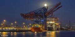 Hafen im Mondschein - 18081602 (Klaus Kehrls) Tags: hamburg hamburgerhafen hafen industrie schifffahrt kräne container mond vollmond mondschein schiffe