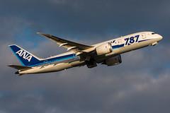 JA820A - ANA All Nippon Airways - Boeing 787-8 Dreamliner (5B-DUS) Tags: ja820a ana all 7878 dreamliner 787 b787 b788 dus eddl dusseldorf dsseldorf international aircraft airplane airport aviation flughafen flugzeug plane planespotting spotting airways boeing