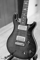 2004 PRS McCarty (Daniel Y. Go) Tags: nikon nikond810 d810 fx philippines prs guitar mccarty prsguitars music 10top paulreedsmith bw mono