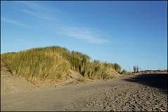 beach entrance (Elly Snel) Tags: ameland eiland island nl dunes duinen zand sand