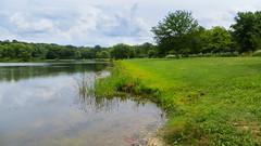 horsetail lake. 2016 (timp37) Tags: summer illinois july 2016 horsetail lake palos park