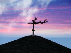 rabbit or hare (Jackal1) Tags: rabbit hare weathervane roof sky sunrise scotland