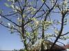 Brunssum, 15 april, Foto: Frens Rutten