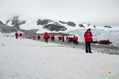 L1002920 (Roy Prasad) Tags: ocean leica travel cruise vacation mountain snow ice expedition water rock island penguin volcano lava gentoo ship sony antarctica prasad cuverville a7ii cuvervilleisland s006 a7r royprasad a7m2 typ006