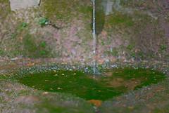 Le coeur de la fontaine (Rwan ncy) Tags: green water bure eau heart pentax bokeh coeur vert fontaine vosges k10d chinon50f14 cltique