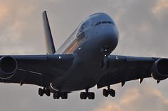 SQ0322 SIN-LHR (A380spotter) Tags: london heathrow landing finals airbus a380 arrival approach sq 800 sia lhr singaporeairlines egll 27r runway27r shortfinals sinlhr msn0045 9vskj sq0322