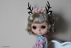 """07.05.2015r- """"Reniferowa księżniczka"""""""