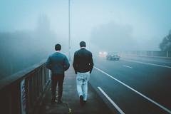 Yarra Blvd (Louis Dazy) Tags: bridge streets cars fog kids night dark walking cool boulevard foggy melbourne lane yarra