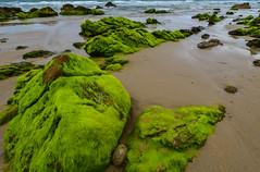 Mossy Stones an Playa de Meron, Cantabria (martinvonberg) Tags: sea beach strand spain sand meer surf es spanien cantabria brandung sanvicentedelabarquera kantabrien playademeron
