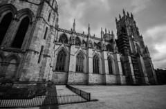 York Minster (Digital Biology) Tags: abbey york minster infrared