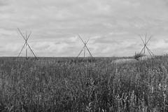 Wanuskewin Heritage Park (lypny) Tags: tipi saskatchewan saskatoon firstnations