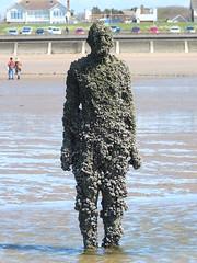 DSCF0685 (SierPinskiA) Tags: sea shells beach liverpool sand ironman pools barnacles ironwork mayday seashore merseyside anthonygormley irishsea 2016 anotherplace crosbybeach blundellsands fujixs1