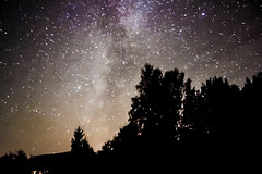 Galaxy (LooreEST) Tags: wood stella trees light sky night forest stars shadows shine astro galaxy astrophotography universe loodus milkyway nightysky