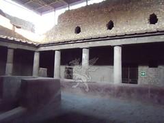 Stabia_Villa di Poppea_35