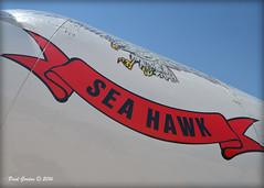 EAA_0056 (Bluedharma) Tags: centennial colorado seahawk seafury centennialairport coloradophotographer bluedharma n254sf coloradoshooter