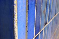 Dutch Colours - Blue (Albita.) Tags: blue holland color colour netherlands azul utrecht thenetherlands tiles holanda azulejos urdina urdin azurro