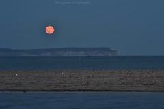 Moonrise over the Isle of Wight #Tasphotographs #moonrise #nightphotography #Dorset #Mudeford #bucksmoon #bucks #moon (noisynightjar74) Tags: tasphotographs moonrise nightphotography dorset mudeford bucksmoon bucks moon