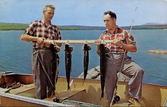 Lac Megantic, quebec (SwellMap) Tags: postcard vintage retro pc chrome 50s 60s sixties fifties roadside midcentury populuxe atomicage nostalgia americana kitsch animal animals wildlife pose posing fish fishing hunting
