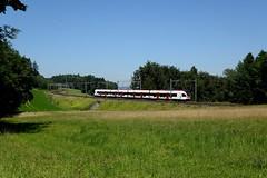 Mhlau (christianbarmettler) Tags: sbahn eisenbahn sbb mhlau
