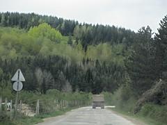 Trees along Highway 29 west of Sjenica, Serbia (Paul McClure DC) Tags: serbia srbija sjenica balkans zlatibor may2016 scenery