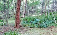 Lot 63 Egans Road, Nelligen NSW