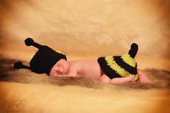 Little bee 2 (debahi) Tags: baby newborn kid costume bee cap wool tricot knitting boy son father mother family strobe strobist