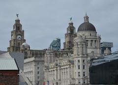 Liverpool skyline (lcfcian1) Tags: liverpool skyline liverpoolskyline royal liver building port royalliverbuilding portofliverpoolbuilding