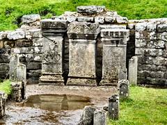 Romans in the North (John McLinden) Tags: carrawburghfort brocolitia roman fort masonry stone mithraeum altar romanaltar stonework hadrianswall mithras
