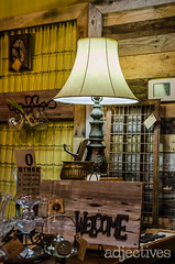adjectives-market-winter-garden-4459 (ADJstyle) Tags: adjectives adjstyle centralflorida furniture homedecor products
