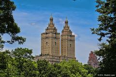 Central Park (Wladimir Lopes) Tags: centralpark nyc