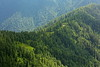 Miranjani: Coffee Pond (Shahid Durrani) Tags: miranjani nathiagali hike