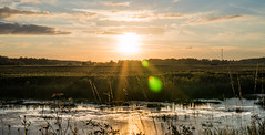 Demidovo (e.glasov) Tags: russia russiansoul moscowregion river sunset sun fields sony a6300
