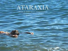 ATARAXIA ([Mara JPM]) Tags: fluir mar beach melancoly melancola tranquilidad paz paisaje azul blue ataraxia manos hands fragile frgil