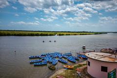Pichavaram Backwaters (Premnath Thirumalaisamy) Tags: pichavaram backwaters tamilnadu mangroveforests