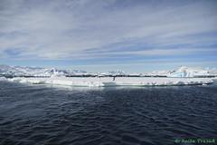 A7R-_DSC4859 (Roy Prasad) Tags: ocean travel cruise sea mountain snow ice expedition water rock zeiss landscape penguin boat ship crystal sony antarctica glacier sound iceberg zodiac anita prasad 2470mm vario tessar adelie a7r crystalsound royprasad anitaprasad variotessarar
