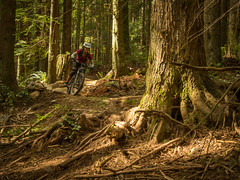 Woohoo Mothers day treat (kendyck1) Tags: bc northshore mtb northvancouver expresso mountainbiking fromme