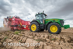 Potato harvesting in South Africa (Remsberg Photos) Tags: africa tractor field southafrica farm farming harvest ground capetown vegetable nightshade agriculture harvester agricultural perennial harvesting westerncape starch tuberous solanumtuberosuml