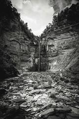 low flow (Jen MacNeill) Tags: park blackandwhite bw newyork nature waterfall bnw taughannockfalls taughannockfallsstatepark