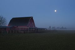 Sunrise with moon setting over field with red barn and fence and (Jim Corwin's PhotoStream) Tags: agriculture nw pacificnorthwest barn beautiful beauty corral countryside cultivation decorative farmland fence field fog horizontal horses icon iconic idyllic inspire inspiring landscape mist moon moonsetting moonset nature northwest outdoors peaceful photography redbarn rural scenic spring sunrise texture tranquil tranquilscene tree trees uplifting