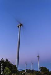 Molinos al atardecer (Pascual Mateo) Tags: gavilanes molinos naturaleza paisaje parqueeolico campo jumilla regindemurcia espaa es