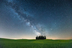 Beautiful Tuscany at Night (Mahmoud Abuabdou) Tags: travel blue trees light sky italy tree green nature beautiful field way stars landscape star countryside amazing interesting nikon exposure italia outdoor awesome wideangle clear astrophotography tuscany cypress lonely 40 toscana milky ultra milkyway dorcia 1635 d610 landscapephotography sanquiricodorcia landscapelover visualoflife