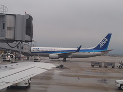 (ChihPing) Tags:  daiwa roynet hotel sendai sakura   japan   olympus em5 omd 45mm f18 airport    ana