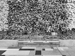 Tokyo Impressions (Matthias Harbers) Tags: city blackandwhite bw building japan architecture photoshop canon tokyo ginza town powershot filter elements labs dxo topaz g3x canonpowershotg3x