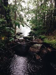Puro. #suomenluonto #jrvi #visitfinland #nature #iphonegraphy #vsco (iMOTOMi) Tags: suomenluonto jrvi visitfinland nature iphonegraphy vsco
